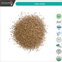 Celery Seeds / Apium graveolens