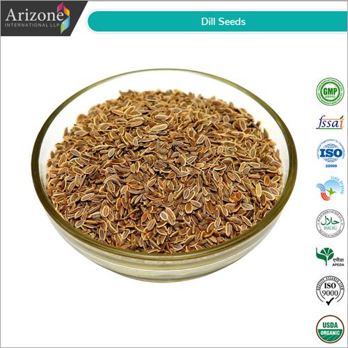Dill Seeds / Anethum graveolens Seeds