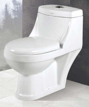 One Piece Toilet