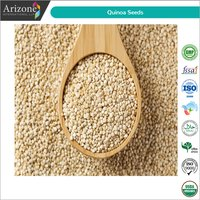 Quinoa Seeds / Chenopodium Quinoa