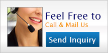 Feel Free to Call & Mail Us