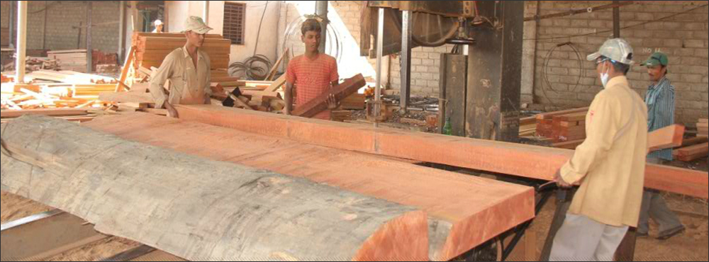 Teak Wood Importer Pine Wood Supplier Wholesaler New Delhi