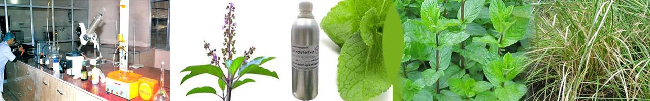 Hindustan Mint & Agro Products Pvt. Ltd.Banner