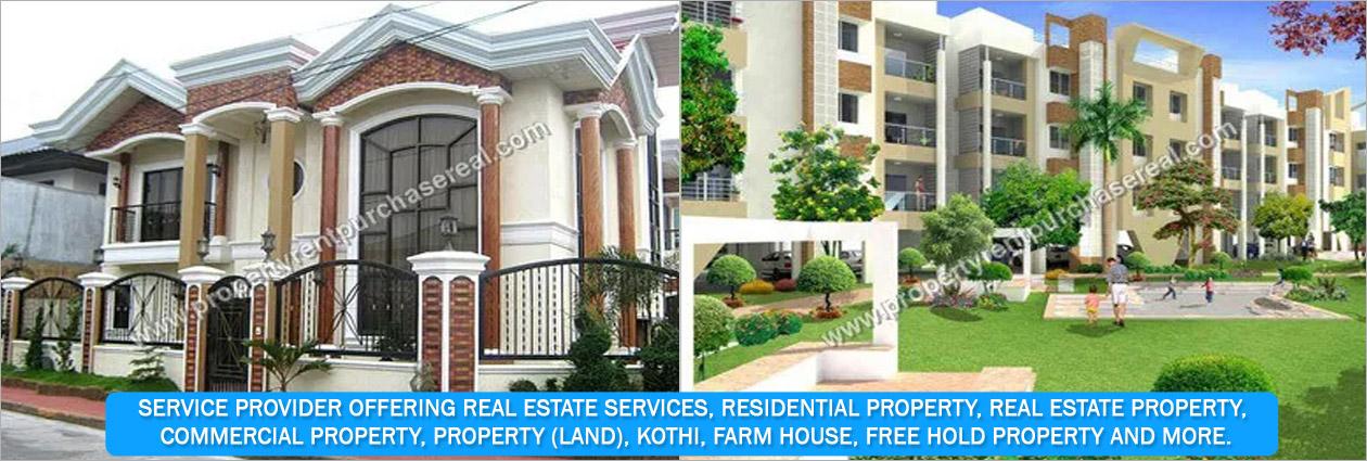 'MVS' Real Estate