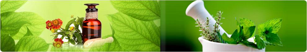Swaraj Herbal Plants Pvt. Ltd.