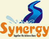 Synergy Water Park Rides Pvt. Ltd