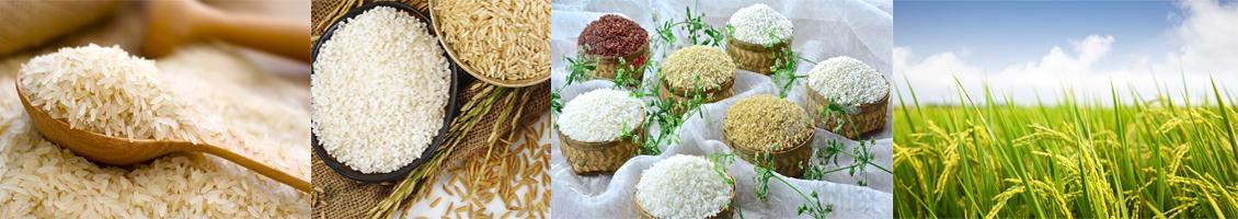 Vaishnavmata Rice Mill  Banner