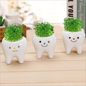 Dental Gift Items