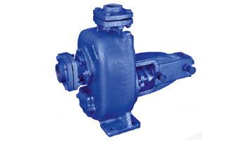 ETP & STP Plant Pump