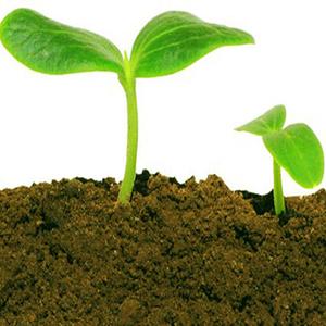 Organic Farming Solution